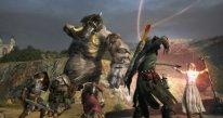 Dragon's Dogma Online 29.01.2015  (2)