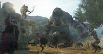Dragon's Dogma Online 29.01.2015  (3)
