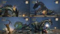 Dragon's Dogma Online 29.01.2015  (4)