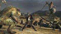 Dragon's Dogma Online 29.01.2015  (5)
