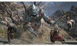 Dragon's Dogma Online monstres images 8
