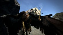 Dragons Dogma Dark Arisen (11)