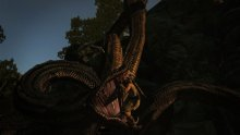 Dragons Dogma Dark Arisen (8)