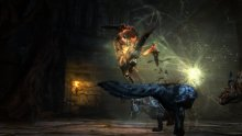 Dragons Dogma Dark Arisen (9)