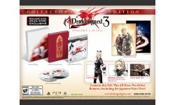 Drakengard 3 05 02 2014 collector 1