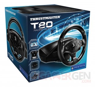 DRIVECLUB thrustmaster accesoire  (2)