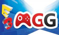 E3 2015 sondage 2