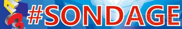 E3 2015 sondage1