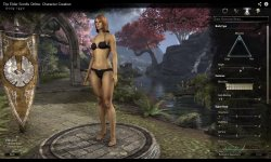 Elder Scrolls Online Creation Personnage
