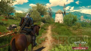 EN The Witcher 3 Wild Hunt Blood and Wine Lets check if millers home