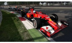 F1 2014 31 07 2014 screenshot (8)