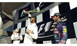 F1 2015 head