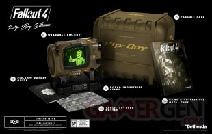 Fallout 4 collector (1)
