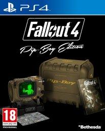 Fallout 4 jaquette (2)