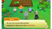 Fantasy-Life_screenshot-16