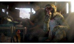 far cry 4 screenshot trailer e3 2014  (6)