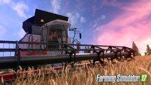 Farming-Simulator-17_29-07-2016_screenshot (3)