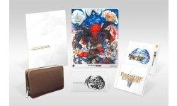Final Fantasy Explorers : collector Ultimate Box, jaquette, bonus de précommande et nouvelles images au Japon