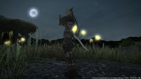 Final Fantasy XIV A Realm Reborn 17 10 2014 Dreams of Ice screenshot 11
