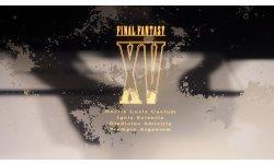 Final Fantasy XV PS4 Slim Collector photos images (5)