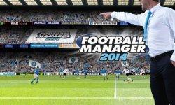 Football manager 2014 art
