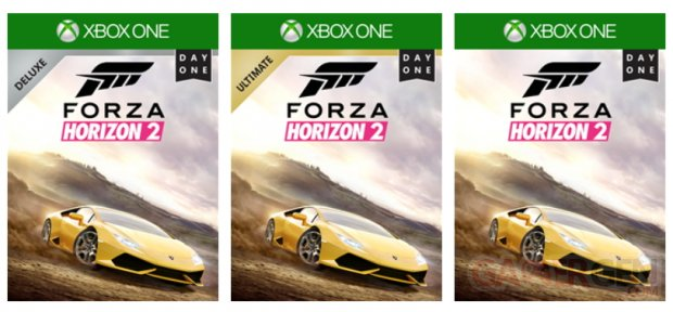 Forza Horizon 2 collectors