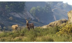 GTA V images screenshots 6