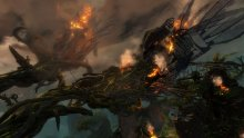 Guild-Wars-2-Heart-of-Thorns_24-01-2015_screenshot-6
