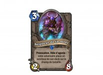 hearthstone malediction naxxramas carte 21 07 2014 (9)