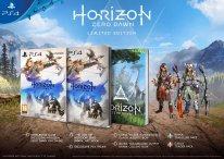 Horizon Zero Dawn édition spéciale