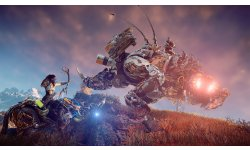 Horizon Zero Dawn images (13)