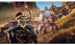 Horizon Zero Dawn images (2)