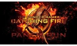 hunger games catching fire panem run