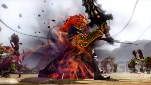 Hyrule Warriors 04 08 2014 screenshot 1