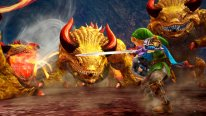 Hyrule Warriors (1)