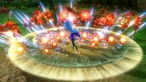 Hyrule Warriors   Captures 10