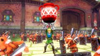 Hyrule Warriors   Captures 20