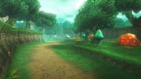 Hyrule Warriors   Captures 22