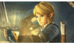 Hyrule Warriors Zelda Muso 22.05.2014  (1)