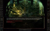icewind dale enhanced edition  (2)