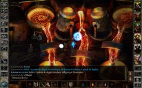 icewind dale enhanced edition  (8)