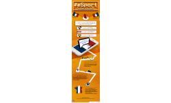 infographie esport e Sport en France on avance