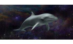 Injustice teasing twitter dauphin