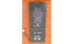 INFO ou INTOX - iPhone 6L : de nouvelles photos supposées de sa batterie