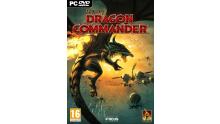 Jaquette PC Divinity Dragon Commander