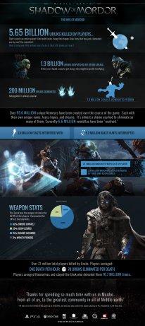 La Terre du Milieu L'Ombre du Mordor infographie