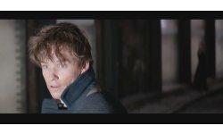Les Animaux Fantastiques bande annonce trailer video image
