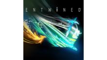 Logo Entwined