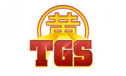 logo tgs gamergen toulousegamesshow