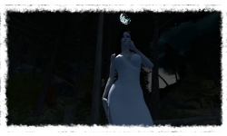 Long Night DameBlanche Lune detoure